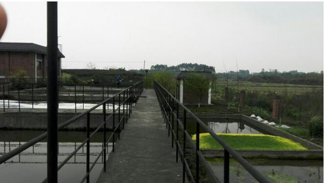 四川某县辖区19个乡镇污水处理厂项目